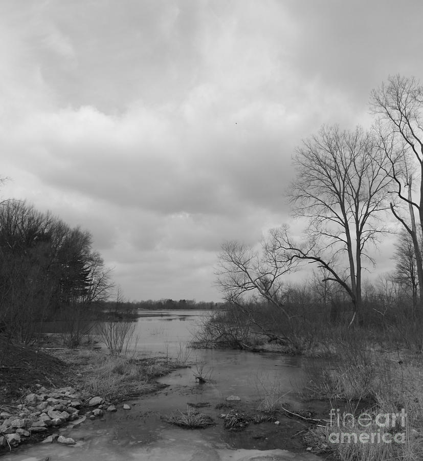 Trees Photograph - Reservoir In Winter  by Sara  Raber