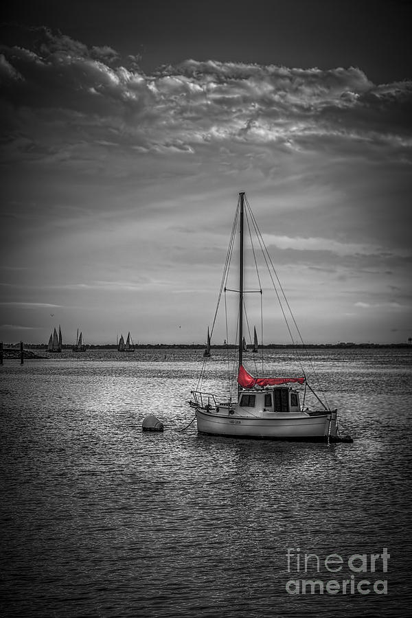 Sailboats Photograph - Rest Day B/w by Marvin Spates