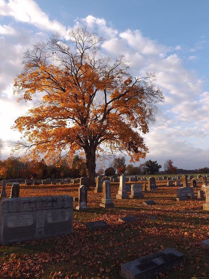 Grave Yard Photograph - Rest In Fall by Shannon Freeman