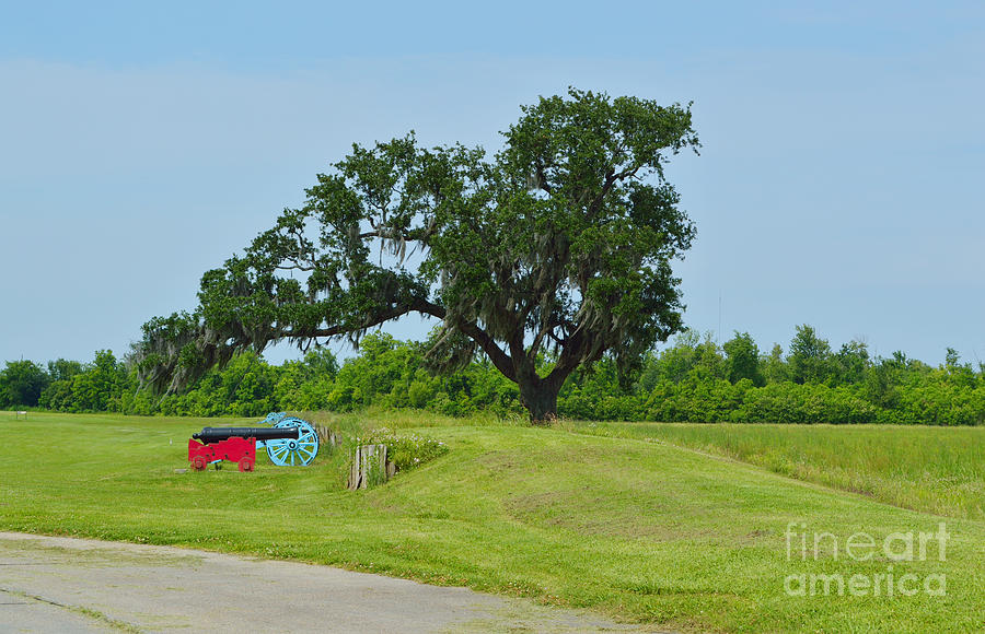 Battle Of New Orleans Photograph - Rest In Peace 1 by Alys Caviness-Gober