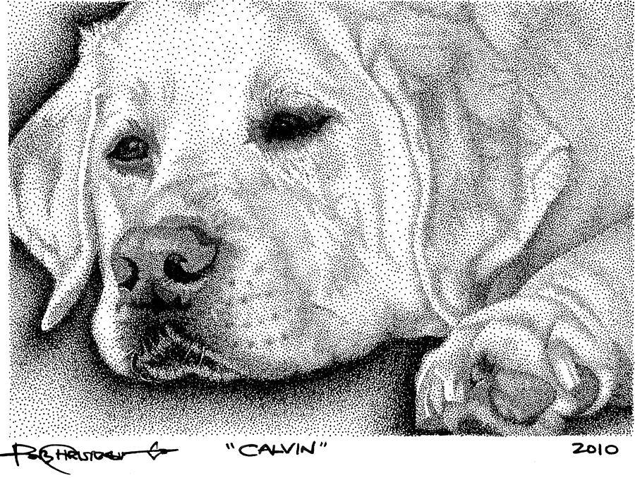Dog Drawing - Resting Lab by Rob Christensen