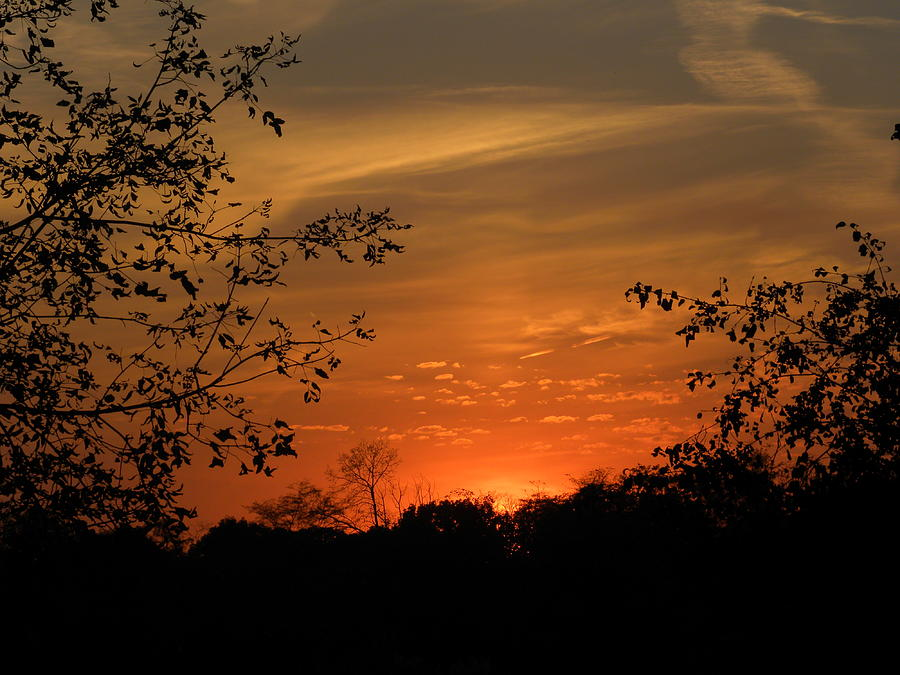 Sunset Photograph - Resting Sun by Teresa Schomig