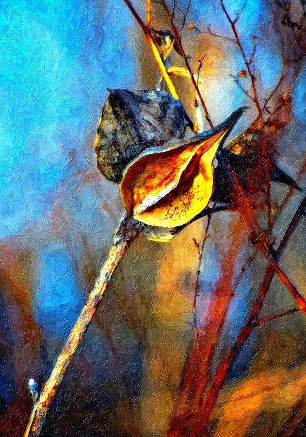Milkweed Photograph - Retirement Painted Version by Steve Harrington
