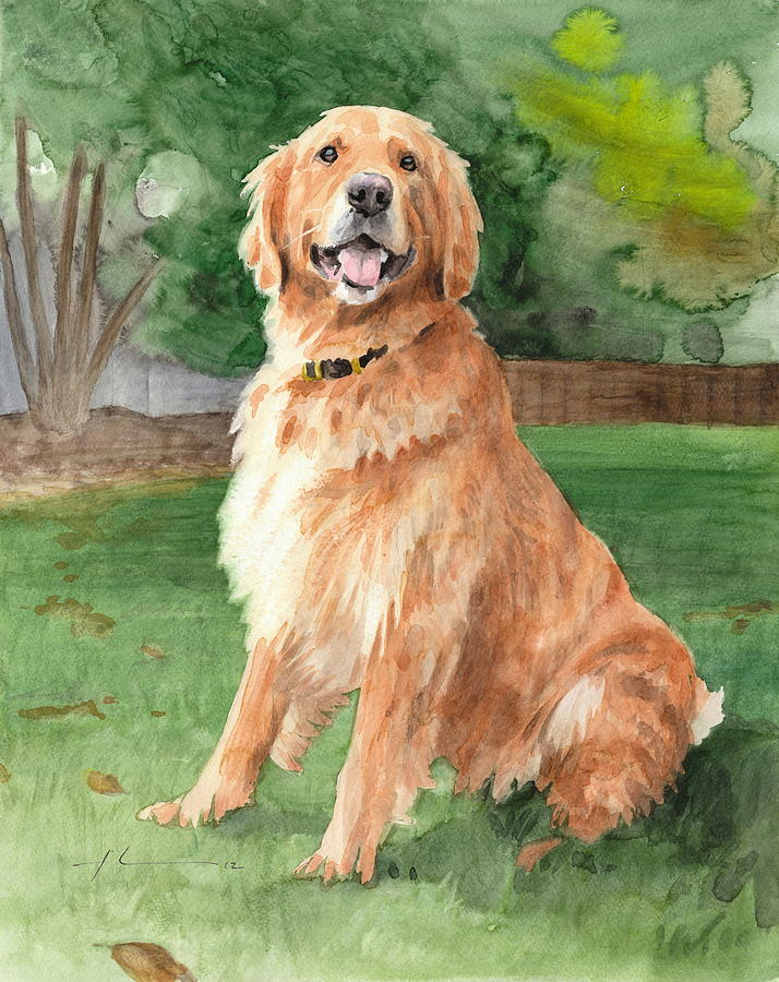 Retriever Watercolor Portrait Drawing by Mike Theuer