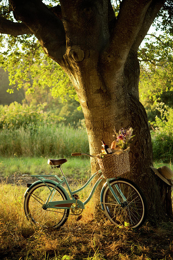 Retro Bicycle With Red Wine In Picnic Photograph by Nightanddayimages