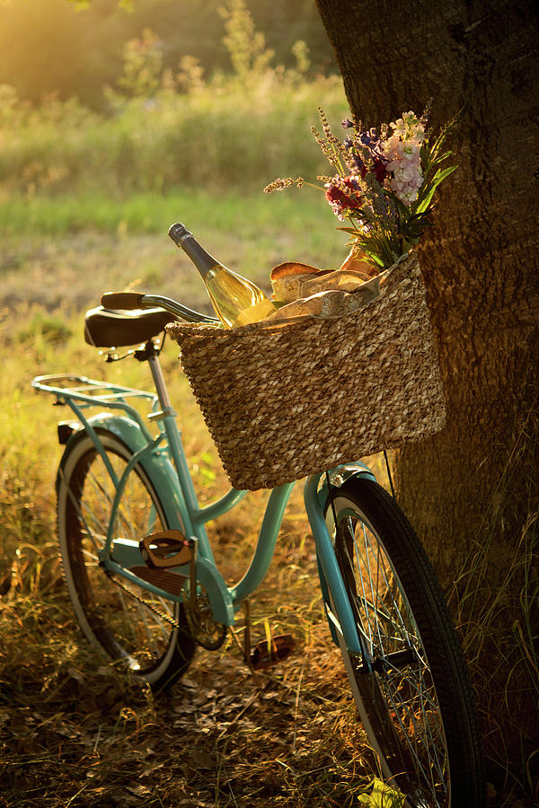 Retro Bicycle With Wine In Picnic Photograph by Nightanddayimages