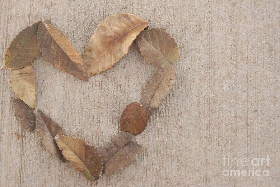 Love Photograph - Retro Love by Kerri Mortenson