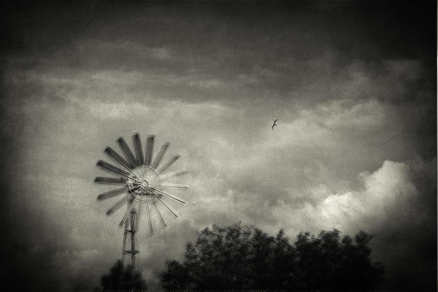 Mill Photograph - Return by Taylan Apukovska