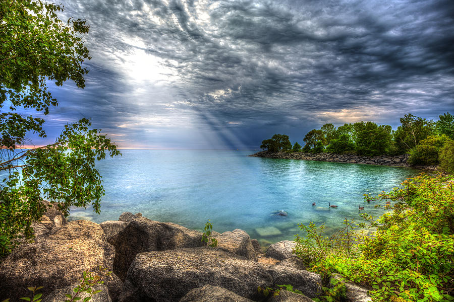 Hdr Photograph - Reverie by Anthony Rego