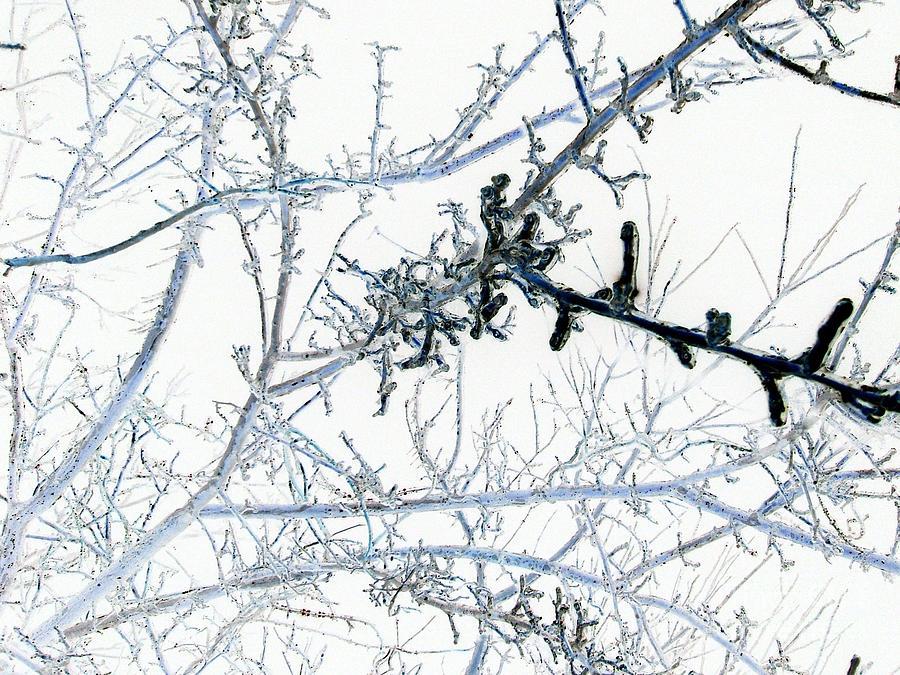 Reversed Ice Digital Art