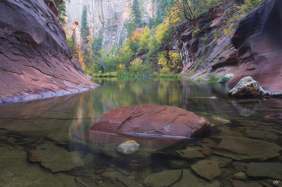West Fork Oak Creek Canyon Photograph - Revisited by Peter Coskun