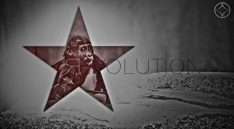 Apes Photograph - Revolution by Beni Cufi