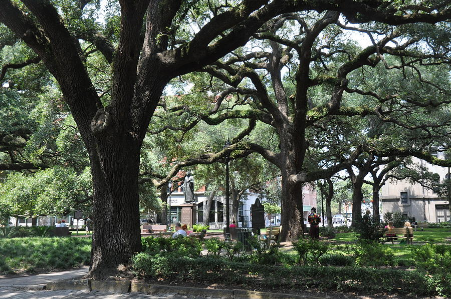 Historic District Photograph - Reynolds Square In Savannah by Kay Mathews