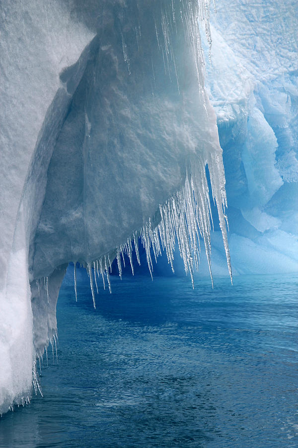 Antarctica Photograph - Rhapsody In Blue by Ginny Barklow