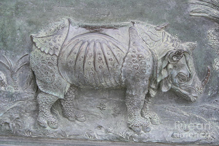 Bronze Relief Photograph - Rhino Relief - Church Door Detail Pisa by Christiane Schulze Art And Photography