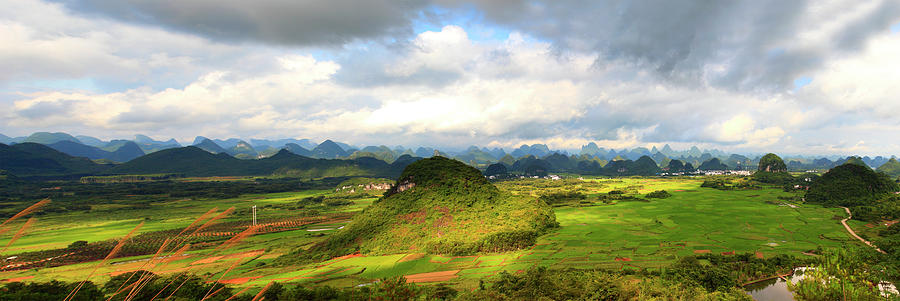 Rice Fields In Photograph by Bihaibo