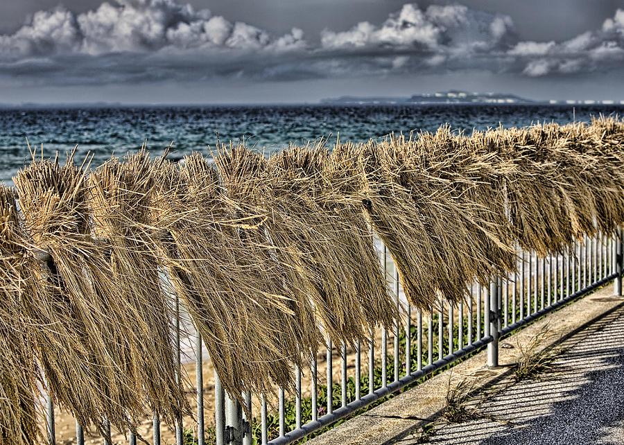 Ocean Photograph - Rice by Karen Walzer