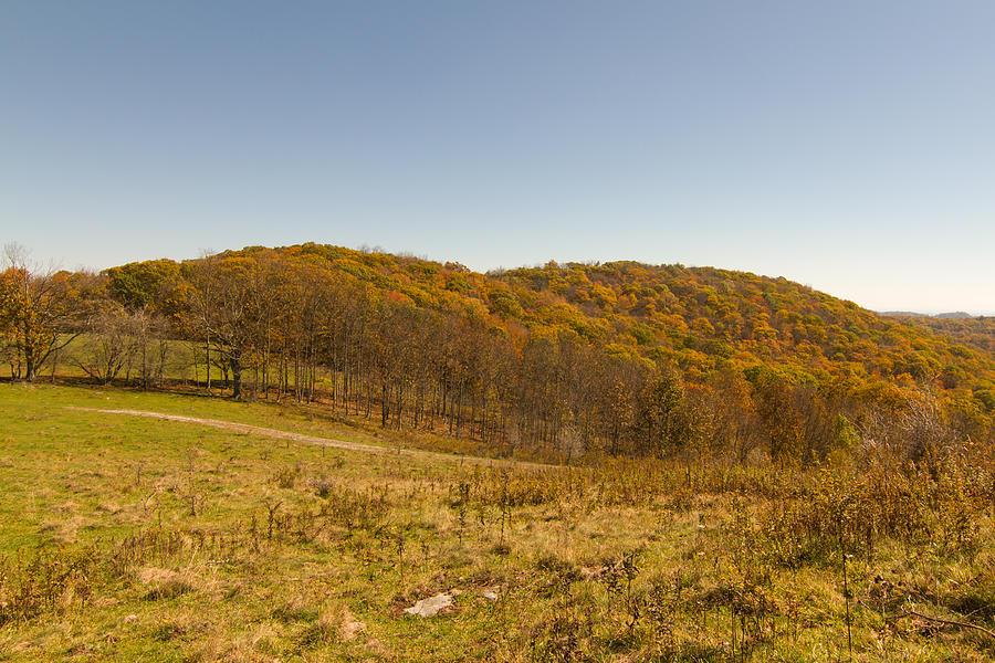 Rich Mountain Autumn Photograph
