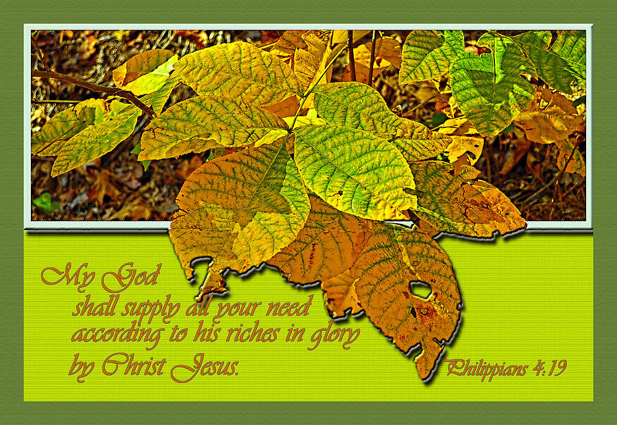 Scripture. Scripture Verses Photograph - Riches by Larry Bishop