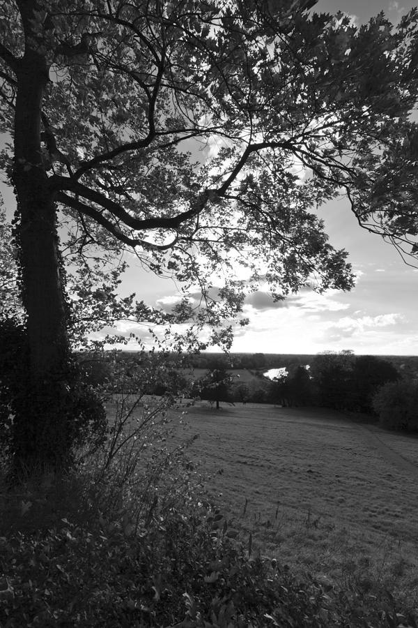 Richmond Hill Photograph