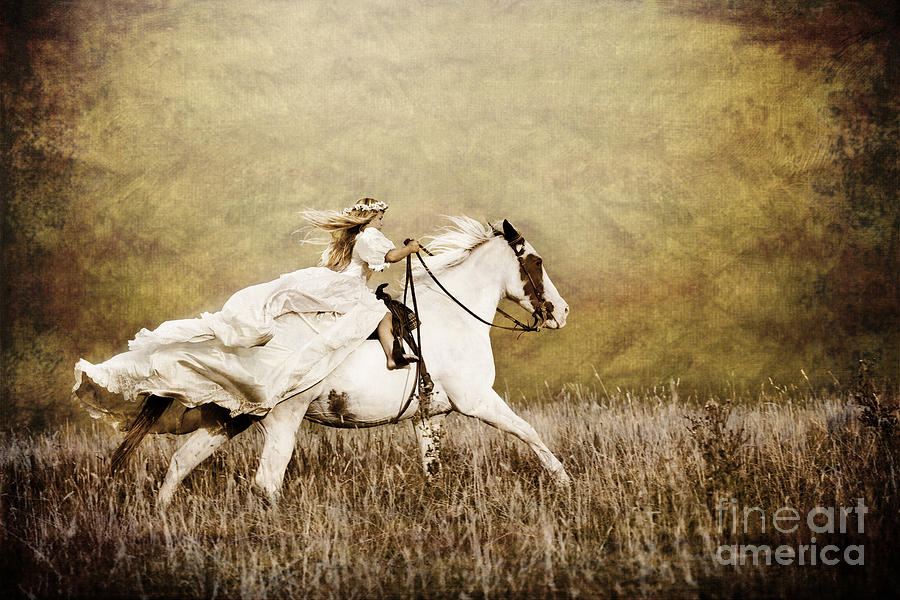 Horse Photograph - Ride Like The Wind by Cindy Singleton