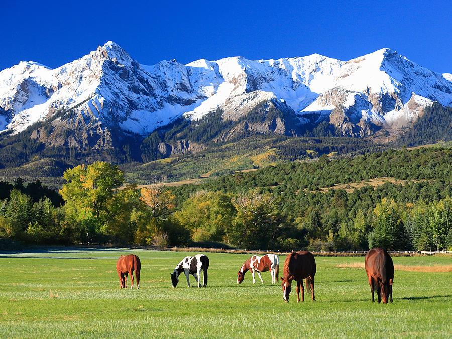 Colorado Photograph - Ridgeway Rl Ranch by Robert Yone