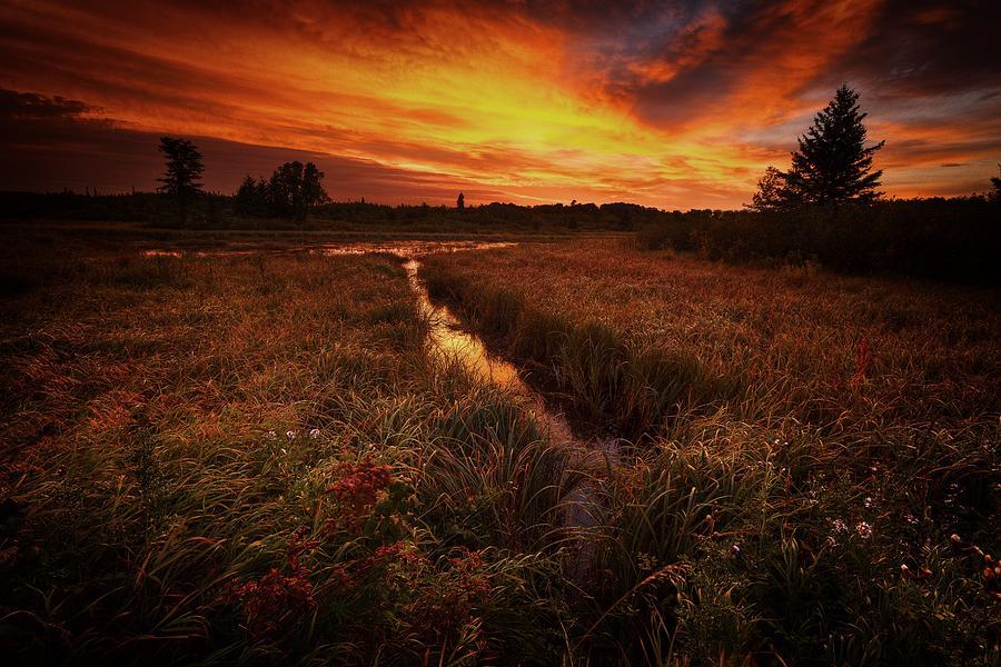 Water Photograph - Riding Sunrise by Stuart Deacon