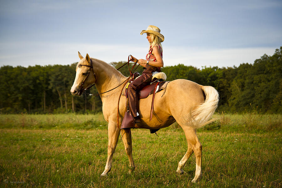 cowgirl hot girl fucking