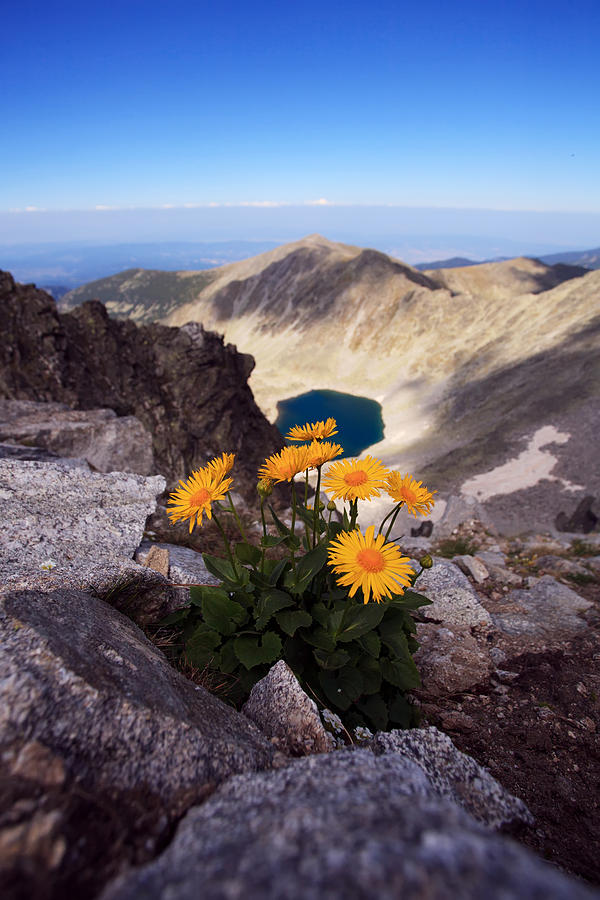 Park Photograph - Rila Mountain by Svetoslav Sokolov