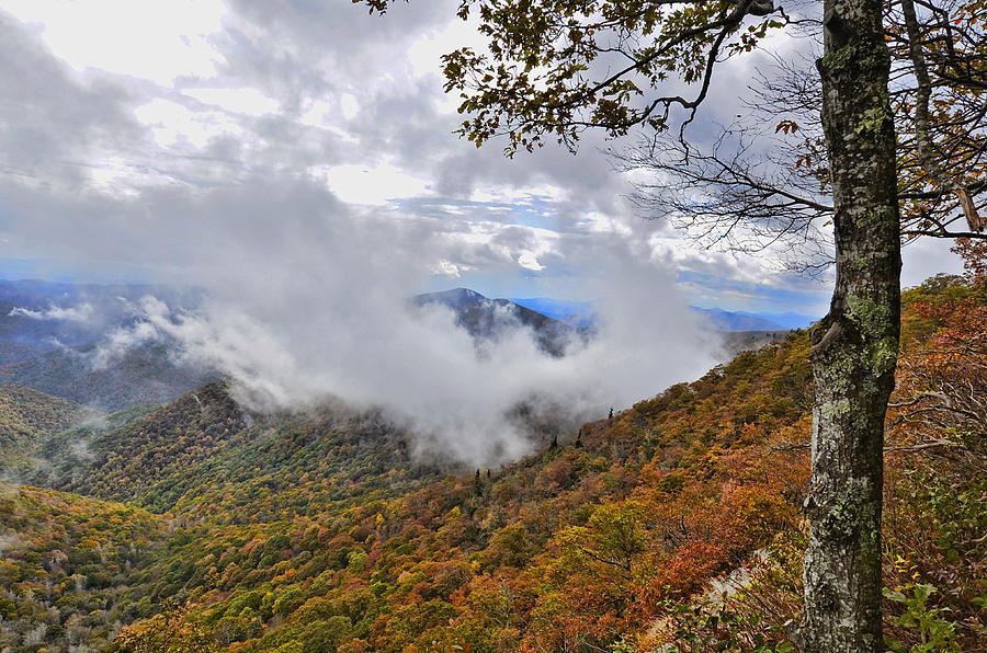 Mountains; Parkway; Autumn; Places; Clouds; America; Driving; Attraction; Travel; Ranges; Distant; View; Mist; Foggy; Usa; Leaves; Seasonal; Beautiful Scenic; Highway; Lookout; Landscape; Outdoors; Season; Visit; Bright; Tourist; Colorful; Colors; Fall Photograph - Ring Around The Mountain by Susan Leggett