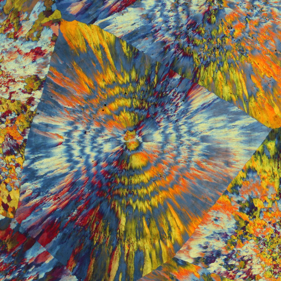 Aesthetic Photograph - Rings Of Jasper by Bernardo Cesare