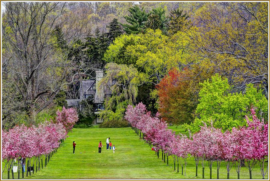 Ringwood Botanical Gardens Garden Ftempo