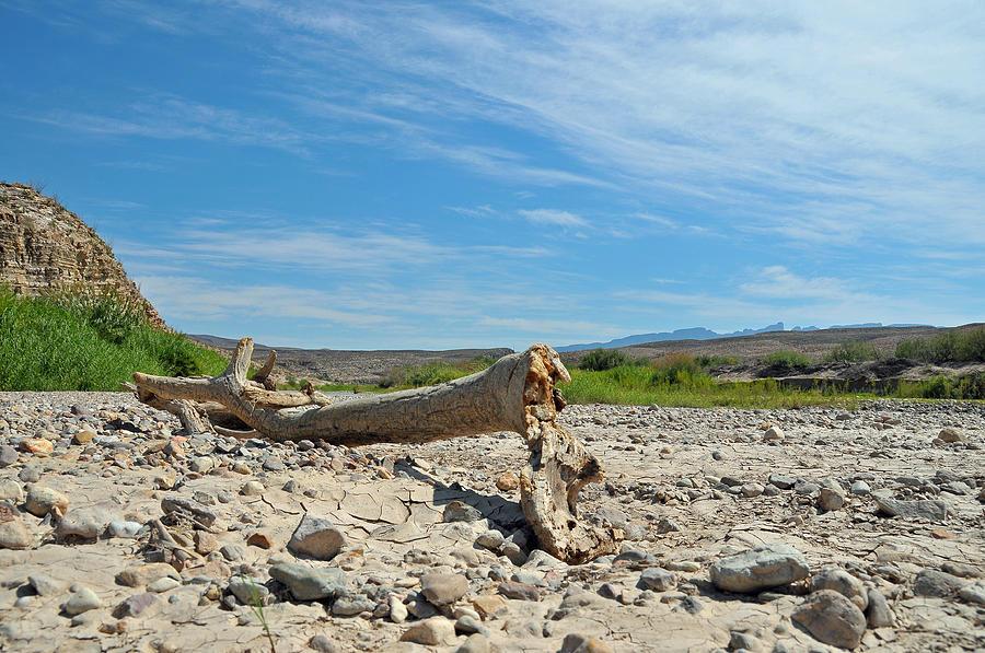 Rio Grande Photograph - Rio Grande by Paul Van Baardwijk