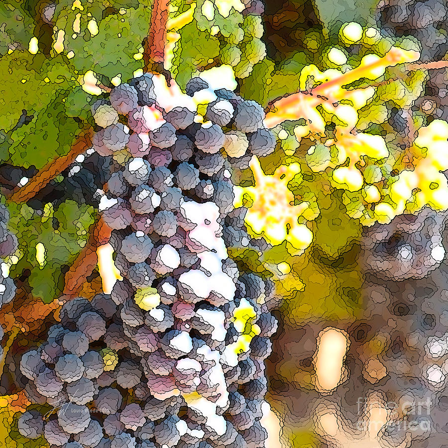 Grapes Painting - Ripe Grapes by Artist and Photographer Laura Wrede