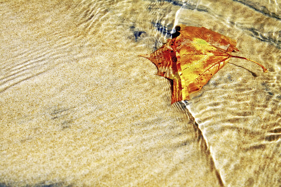 Autumn Photograph - Ripple In Time by Jason Politte