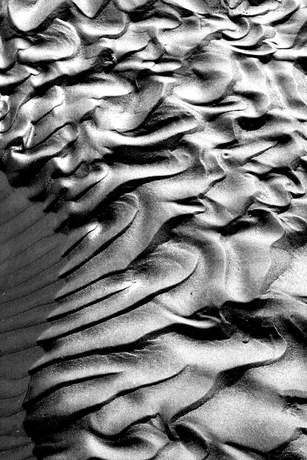 Ripples Photograph - Ripples 1 by Robert Woodward