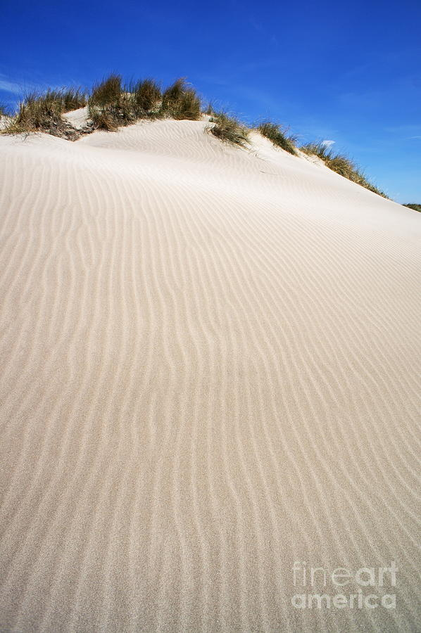 Beauty In Nature Photograph - Ripples In Sand Dune by Sami Sarkis