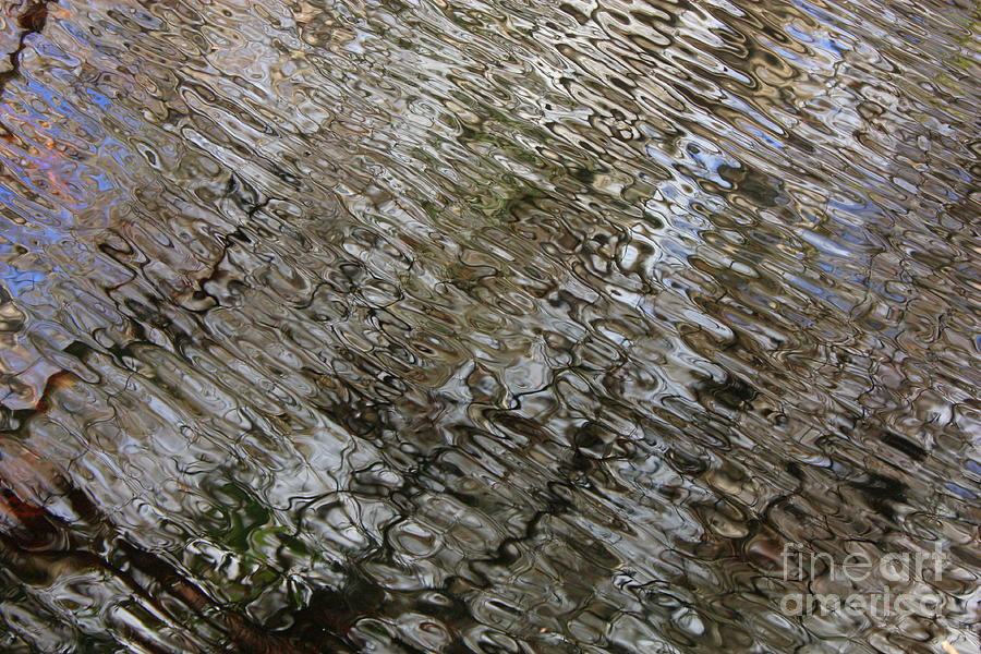 Nature Abstract Photograph - Ripples In The Swamp by Carol Groenen