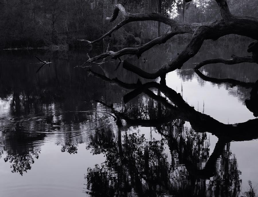 Ripples Of Black And White Photograph - Ripples Of Black And White by Warren Thompson