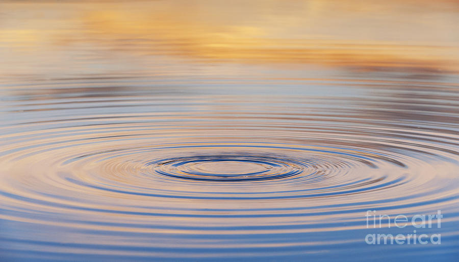Water Ripple Photograph - Ripples On A Still Pond by Tim Gainey