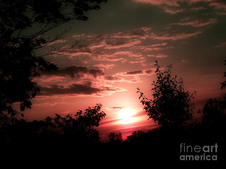 In Awe Photograph - Rise An Shine IIi by Scott B Bennett