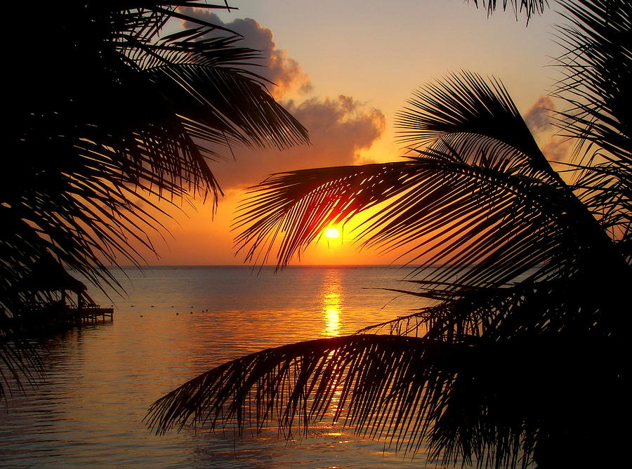 Belize Photograph - Rise And Behold by Karen Wiles