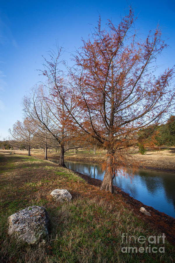 River and Winter Trees by John Wadleigh