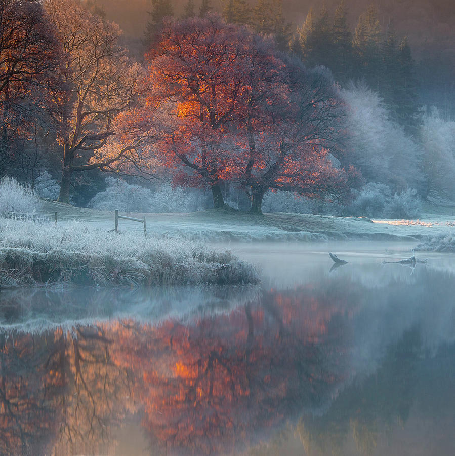 Winter Photograph - River Brathay by Wolfy