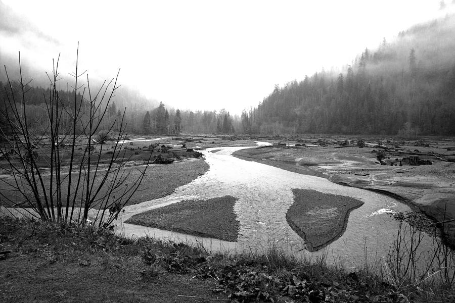 River Photograph - River In The Rain by Gordon  Grimwade