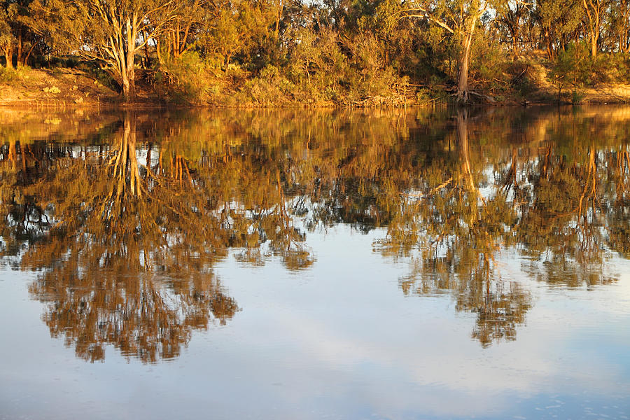 River Murray Australia Photograph - River Murray Reflections Early Evening by Carole-Anne Fooks