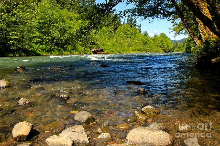 Oregon Photograph - River Of Song  by Tim Rice
