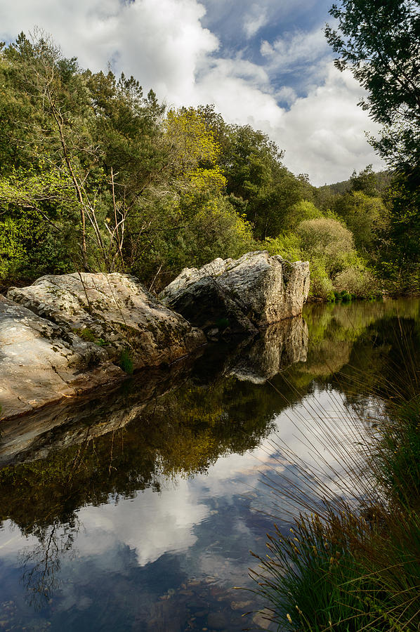 River Photograph - River Reflections II by Marco Oliveira