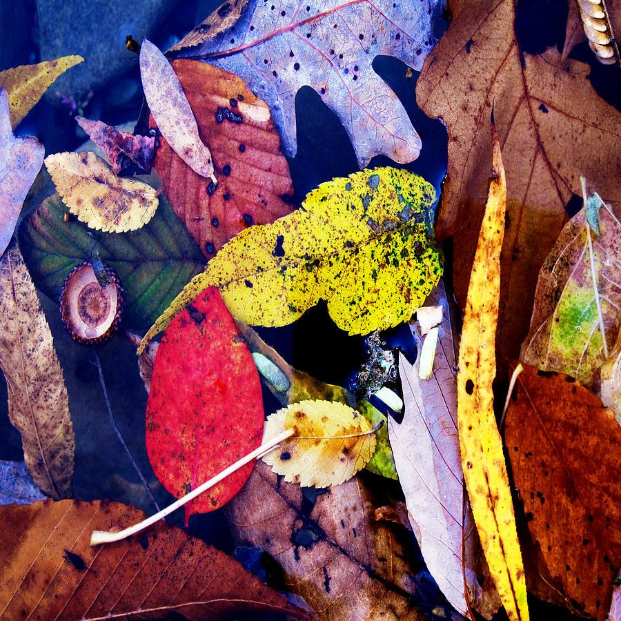 River Digital Art - River Tea by David Walker