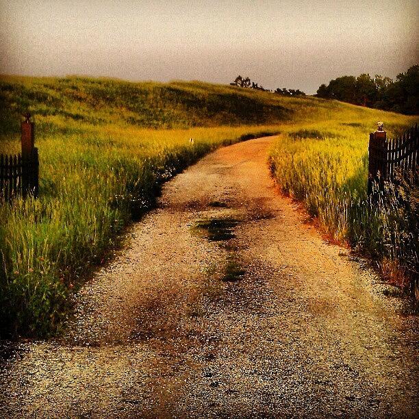 Beautiful Photograph - #road #dirtroad #gate #open #rural by Jill Battaglia